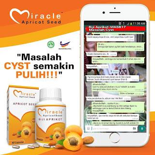 Miracle Apricot Seed - Biji Aprikot MASB17 Supplemen Keperluan Keluarga