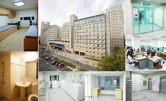 Cơ sở vật chất và chất lượng giảng dạy tại Hàn Quốc