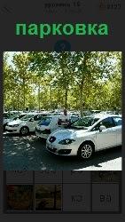 машины стоят на парковке около домов под деревьями