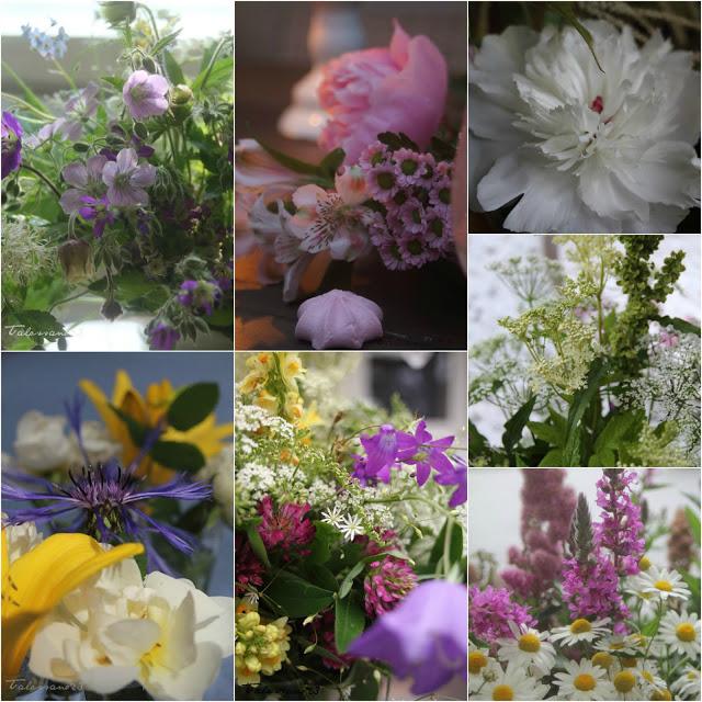 #kukkailottelu, valokuvakollaasi, kukkia