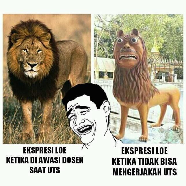 Macan Somplak ini Lebih Lucu Dari Macan Nyengir Cisewu   liataja.com