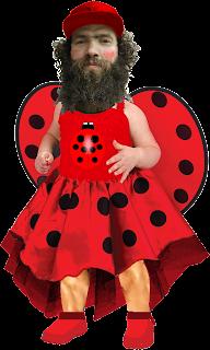 ladybird nazi