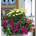 Summery flower decorations