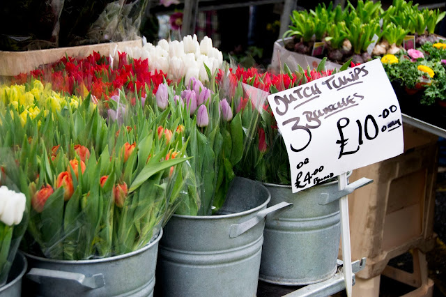 Dutch tulips in a range of colours