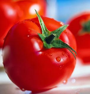 Manfaat Buah Tomat Bagi Kesehatan dan Kecantikan