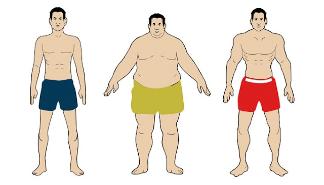 Know Your Body Type