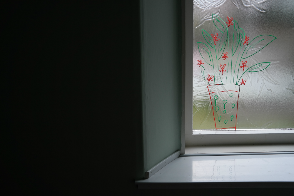Plant drawn on window with ChalkOla chalkboard markers
