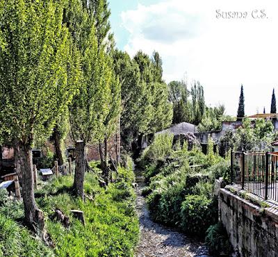 Cifuentes - Alcarria - Guadalajara
