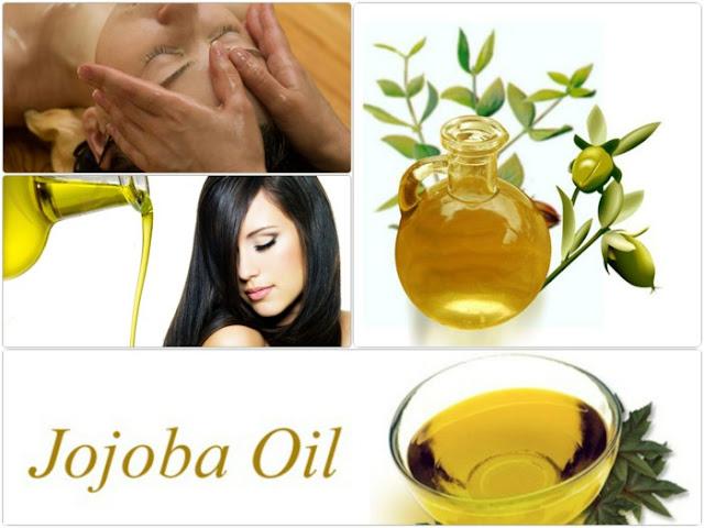 tác dụng của dầu jojoba dưỡng tóc