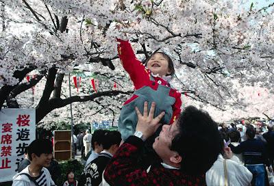 كوكب اليابان الذى اذهل العالم