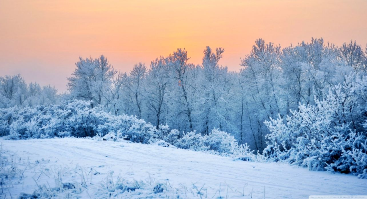 Winter Snow Wallpaper Select Wallpapers