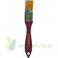 http://zielonekoty.pl/pl/p/Pedzel-syntetyczny-plaski-Stamperia-25mm/785
