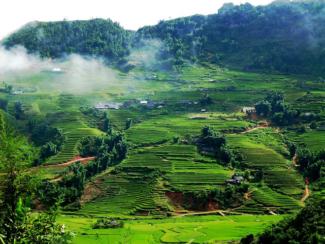 Family Tours in Mai Chau Great Family Holidays in Vietnam 1