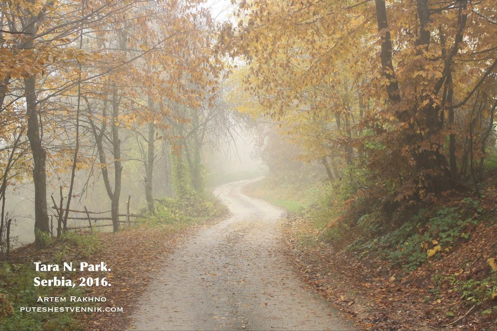 Осенняя дорога в Сербии