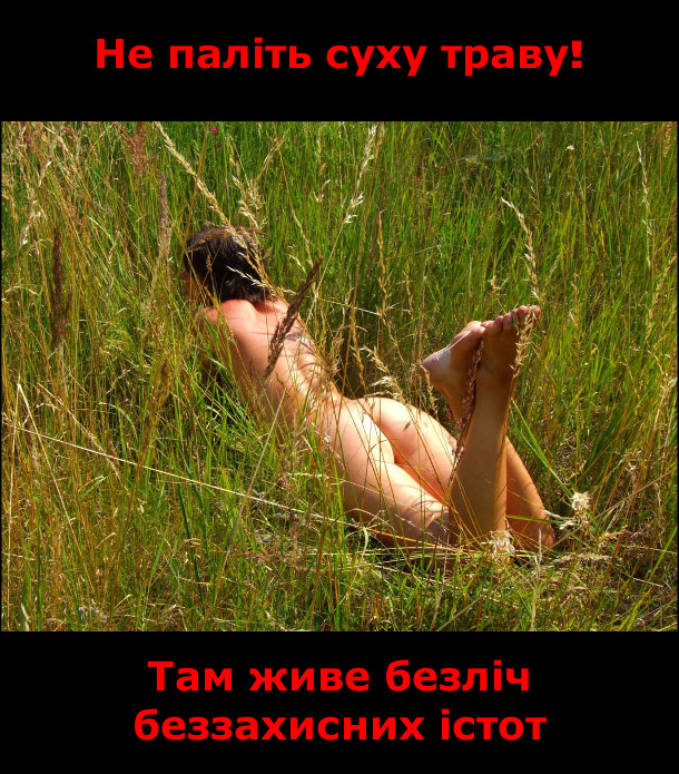 Не паліть суху траву! Там живе безліч беззахисних істот
