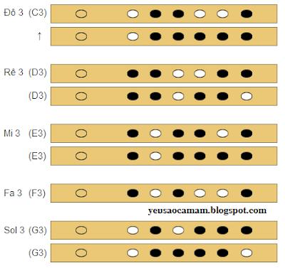 Cách bấm thổi các nốt nhạc trên sáo trúc 6 lỗ