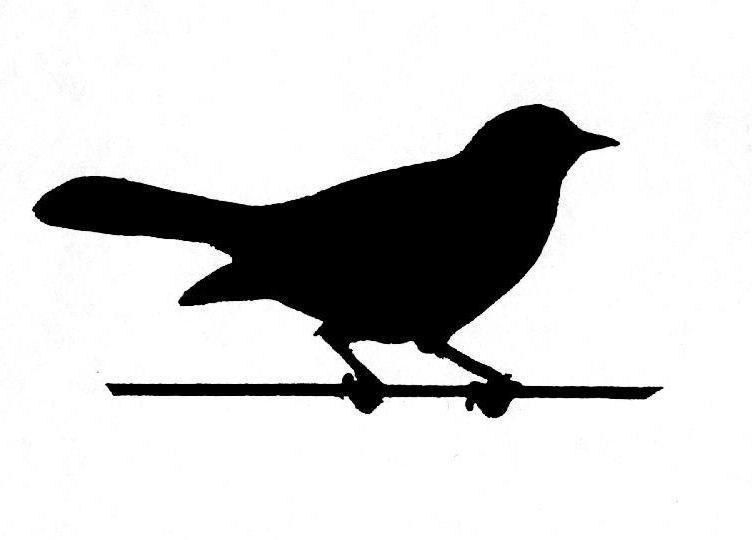 Vogeltje Kleurplaat Vogelsenzo Merel Zingt Opnieuw
