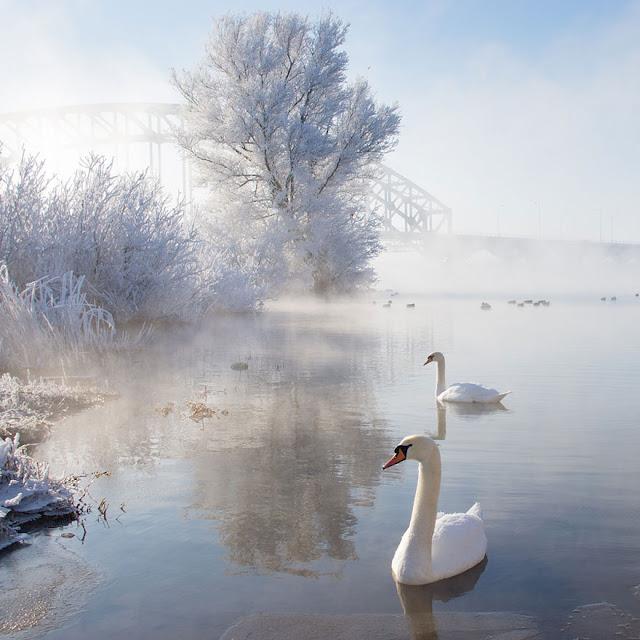 winter-landscapes-7