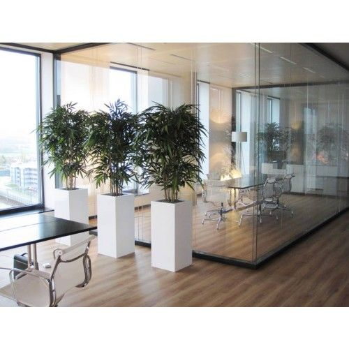Artificial Bamboo Can Play A Great Role In Enhancing The Décor Of An Office Is Added To Create Wonderful Environment That