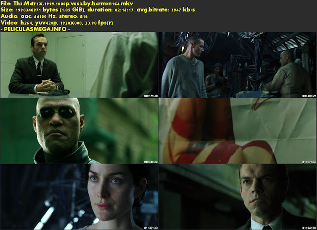 Descargar The Matrix Subtitulado por MEGA.