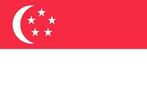Kumpulan sejarah Singapura