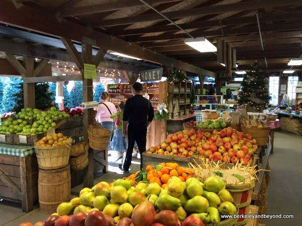 fresh produce at Avila Valley Barn in San Luis Obispo, California
