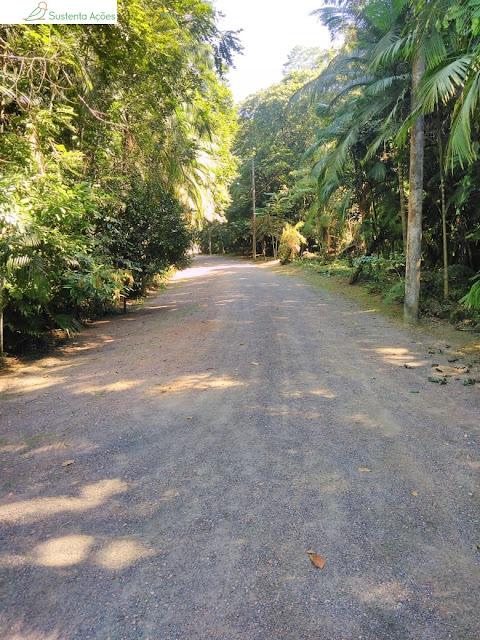 Caminho no Jardim Botânico de Timbó