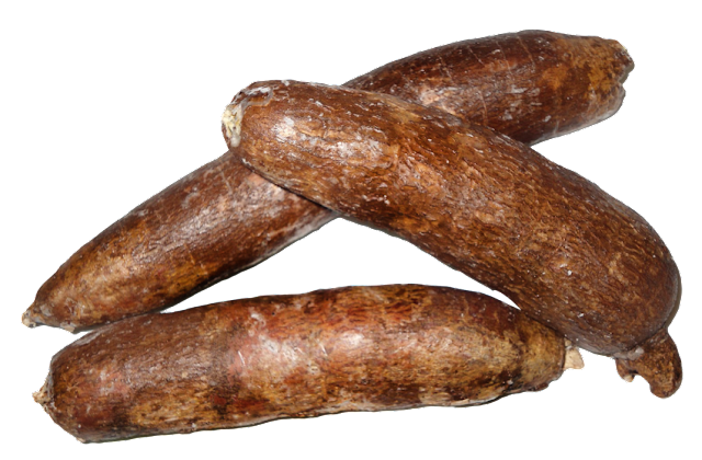 This Woman Uses A 'Cassava' Or Kamote For Her Own Pleasure But Ends Up Being Rushed To The Hospital!