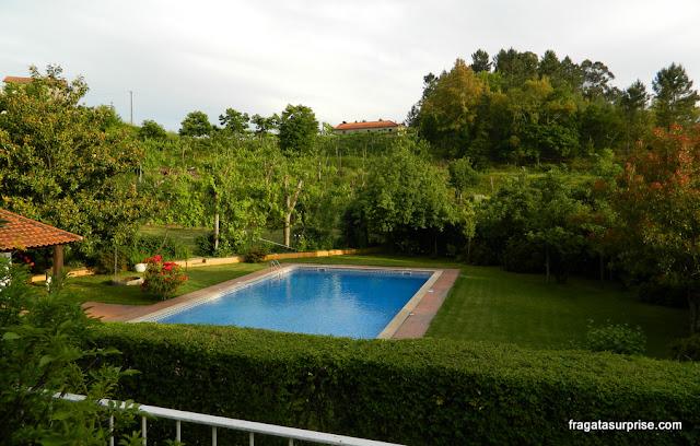 Piscina cercada por vinhedos na hospedaria rural Casa São Faustino de Fridão, em Amarante