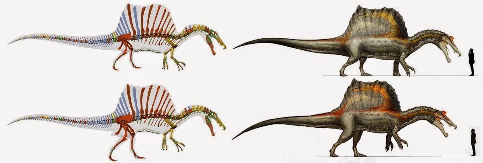 Resultado de imagen de blogspot, spinosaurus