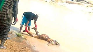 Lifeless Body of a Student Found in Ilorin River