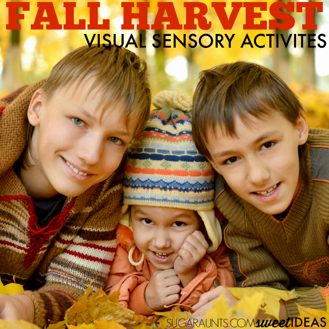 Fall Visual Processing Sensory Activities with a fall or harvest theme.