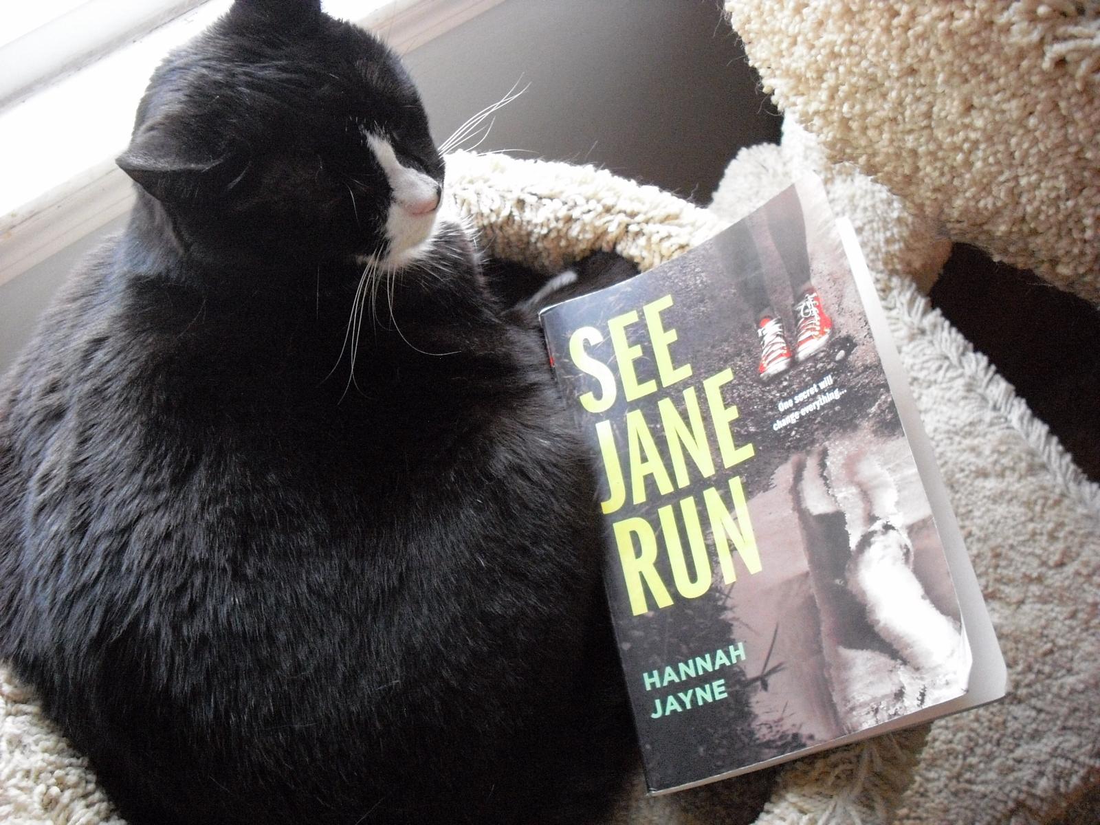 See Jane Run Book