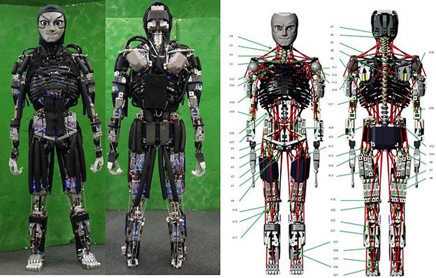 kengoro robot que transpira
