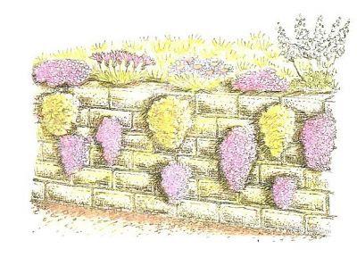 rocalla sobre muros de contención