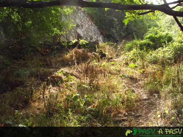 Zona en Pando Culiembro con vegetación