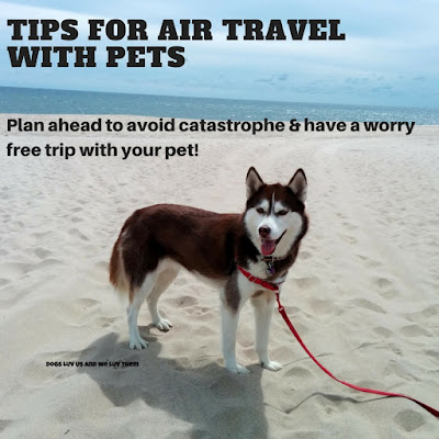 Air travel with pets requires planning & preparation, know airlines requirements & restrictions. Tips for traveling by airplane with dogs or cats
