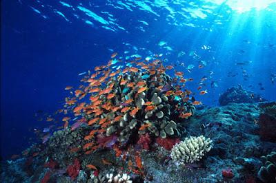 Daftar Tempat Wisata di Manado yang Menarik dikunjungi