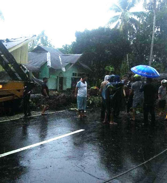 Warga menyaksikan pohon tumbang yang menimpa rumah warga dan melintang di badan jalan.