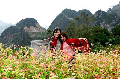Du khách chụp ảnh bên cánh đồng Tam Giác mạch