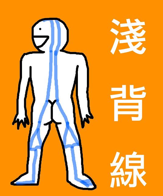 好痛痛 小醜人 淺背線 解剖列車 筋膜 結締組織