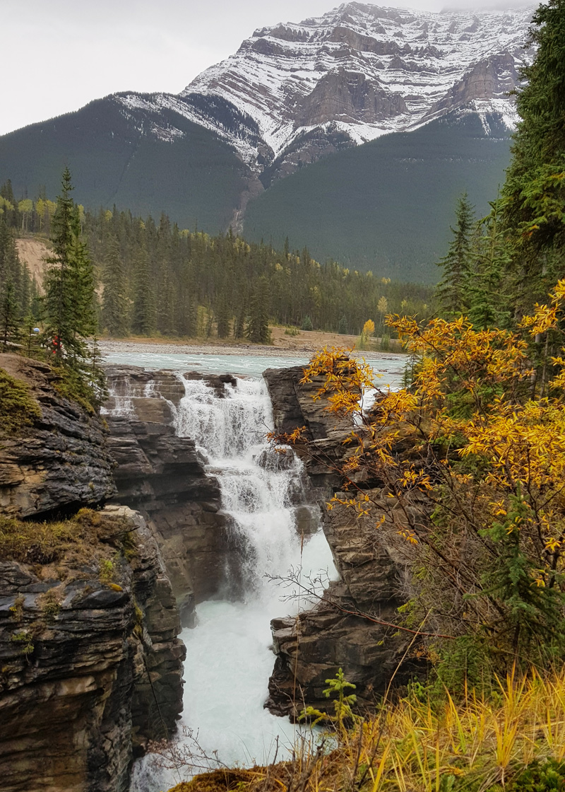 Athabasca Falls in September