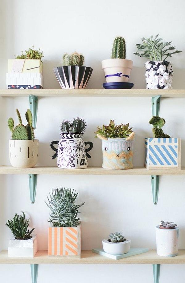 Original Ideas For Decorating Interiors With Cactus 9