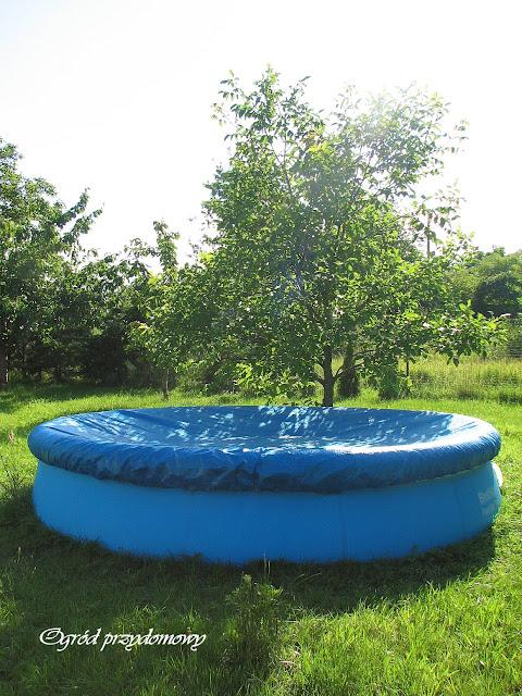 dmuchany basen, dmuchany basen do ogrodu, ogród przydomowy