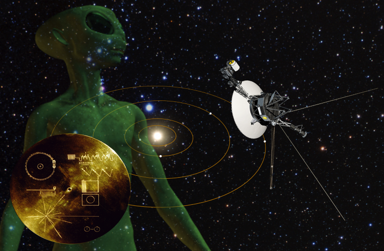 Risultati immagini per Alien Message in NASA Voyager File