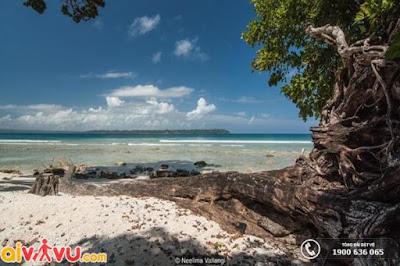 Những điều bí ẩn về hòn đảo bị bỏ hoang trên biển Ấn Độ Dương