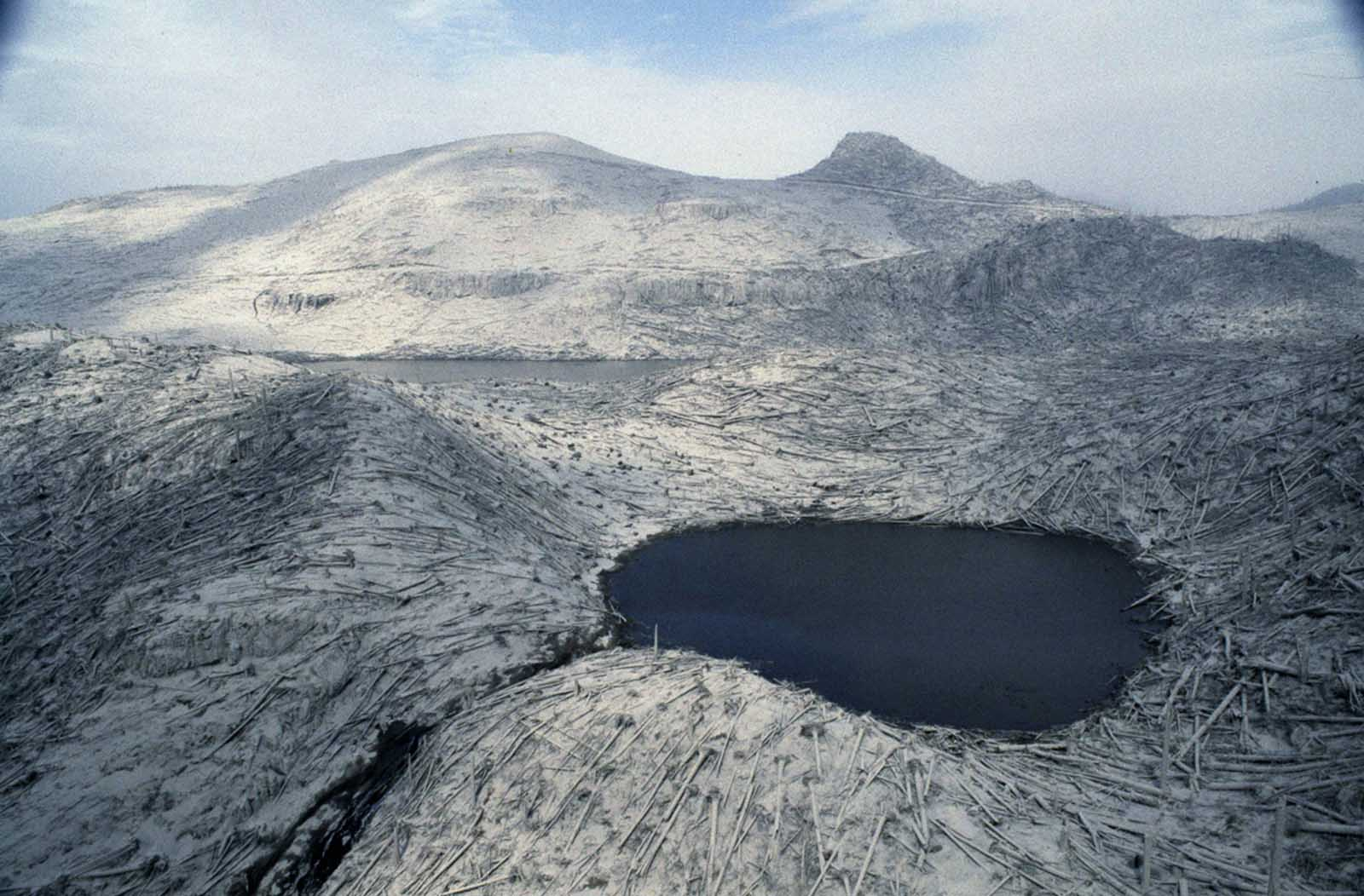 Denuded trees lay like matchsticks in the changed landscape around Mount St. Helens, shown two days after eruption, on May 20, 1980.