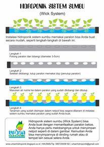 urban hidroponik, urban farming,