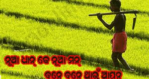 Best Nuakhai HD Images for Whatsapp or Facebook
