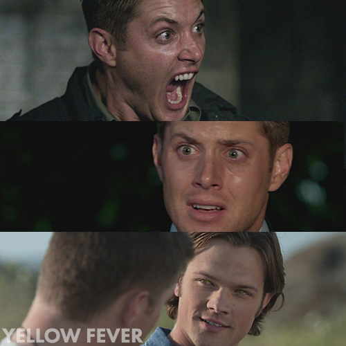 Supernatural 4x06 - Yellow Fever